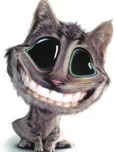Souriez, vous êtes filmé dans Humour c0d25e9d-231x300