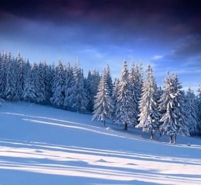 En silence dans Poésie 15256123-magnifique-paysage-hivernal-dans-la-foret