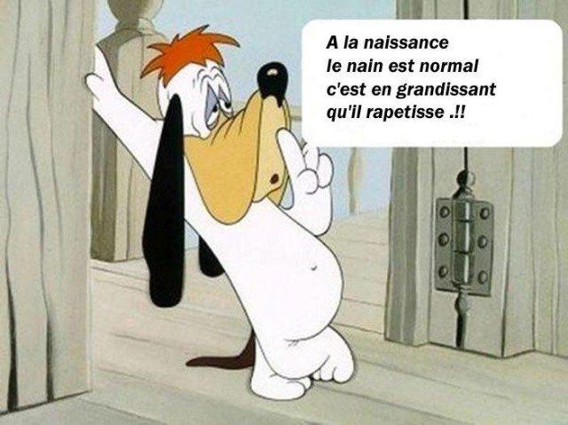Droopy... dans Humour cid_image003_jpg01ce58a5