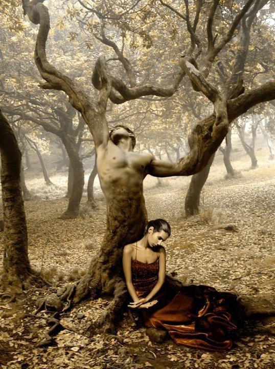 Souffrance dans divers femme-arbre-2