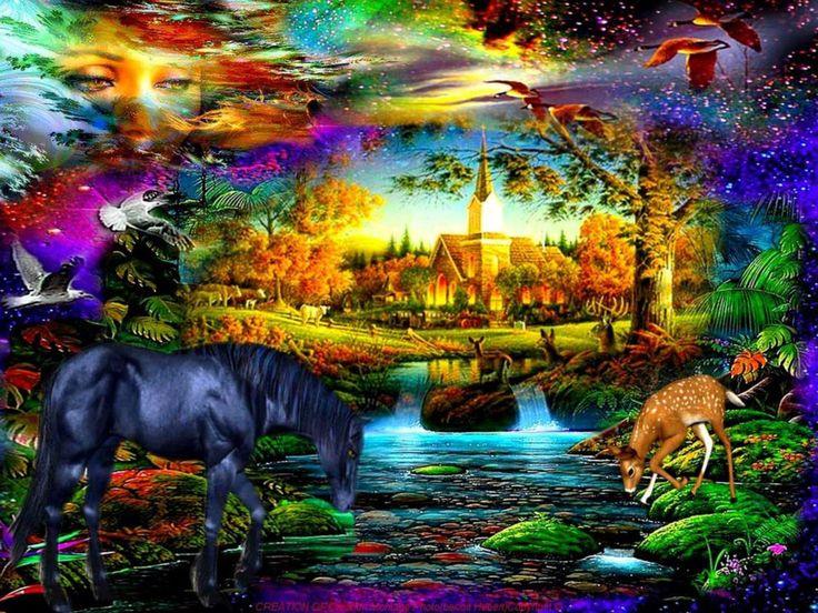 belles-images-univers